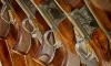 У жителя Васильевского острова отобрали коллекцию ружей и карабинов