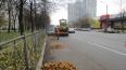 Более 500 тонн мусора вывезли с улиц Петербурга за ...
