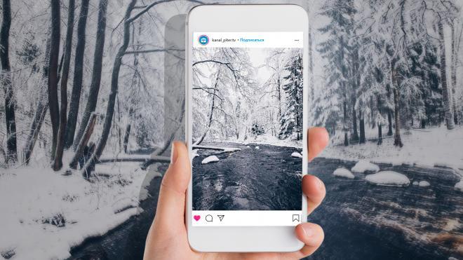 Огромные сугробы, ледяные блины и лиственницы: как Линдуловская роща стала главной Instagram-локацией этой зимы