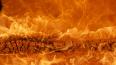 В Шлиссельбурге в загоревшемся ларьке ночью погибла ...