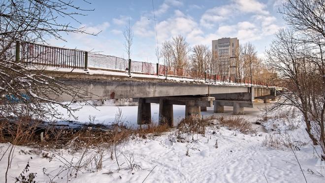 В Петербурге полностью разработали проект капремонта Рыбацкого моста