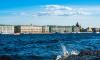 Мужчину тонувшего в акватории Невы доставили к Кунсткамере