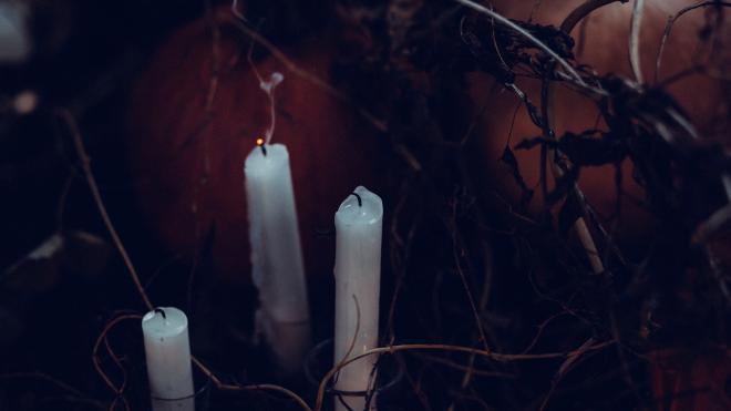 Найденные в Петербурге человеческие останки могут быть связаны с ритуальными убийствами