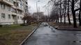Ветер валит деревья в Петербурге