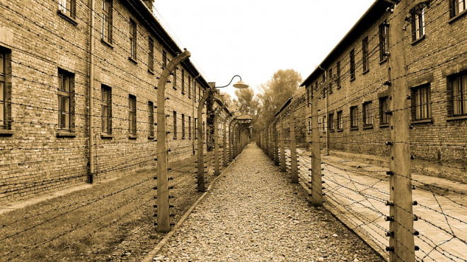 Из колоний Петербурга и Ленобласти досрочно освободились 1300 человек