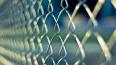 """Заключённые СИЗО """"Кресты"""" признались в избиении сокамерн..."""