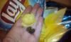 Петербуржец купил пачку чипсов с камнями внутри