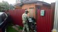 В Кольгучино ФСБ нейтрализовала двоих бандитов, пытавшихся ...