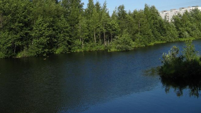 В Петербурге продолжается расчистка русла Глухарки