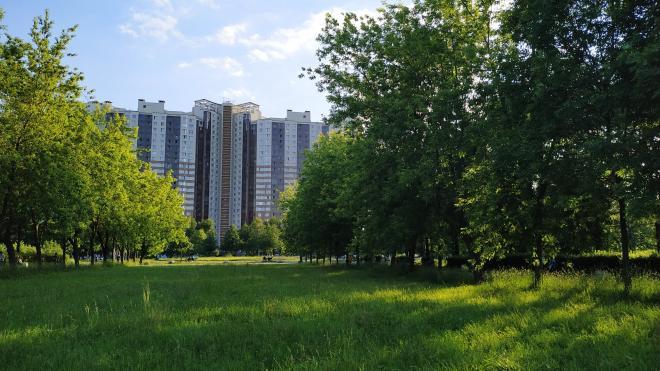Губернатор обозначил возможный срок открытия парков в городе