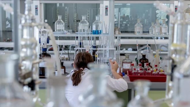Петербургские учёные нашли простой и быстрый способ выявления клещевого энцефалита