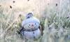 В Петербурге 14 марта похолодает до -5 градусов