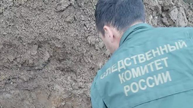Следком возбудил дело после обнаружения останков семьи с ребенком в Ленобласти