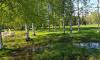 В парке Академика Сахарова избавятся от лишней воды