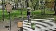 """Рядом с """"Петербургским ангелом"""" начали появляться цветы"""