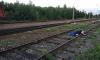 На путях в Новом Петергофе найден мужчина: предположительно он был сбит поездом