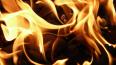 В Москве при пожаре на подземной автопарковке погибли ...