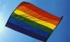 ВС РФ подтвердил запрет на гей-пропаганду