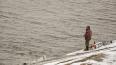 В Кронштадтском районе Петербурга рыбак оставил на ...