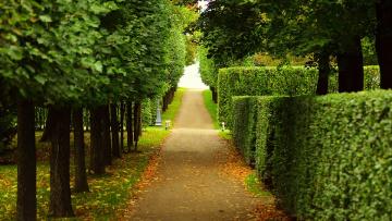 Власти Петербурга выделили на благоустройство садов и парков 2,5 млрд. рублей