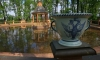 Летний сад откроется в День рождения Петербурга