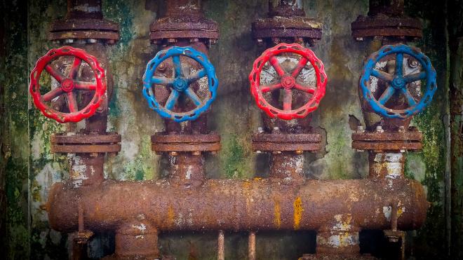 Петербургская управляющая компания ответит за неисправную канализацию и грызунов в подвале