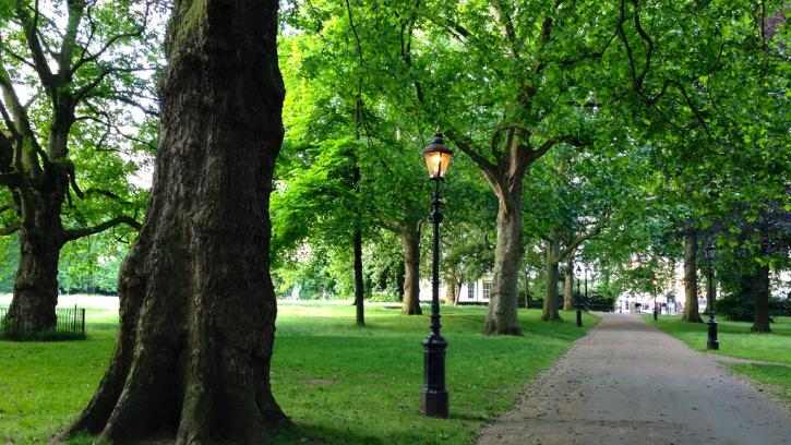 В этом году в Петербурге благоустроят более 100 парков и общественных пространств