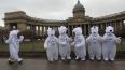 Белые медведи устроили забег по центру Петербурга