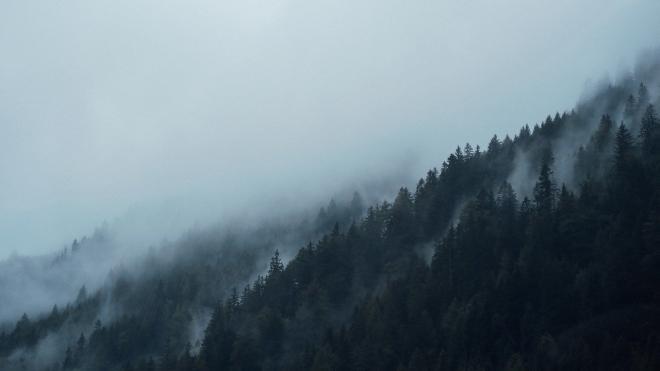 В горах возле Сочи заблудился тренер с 9 несовершеннолетними