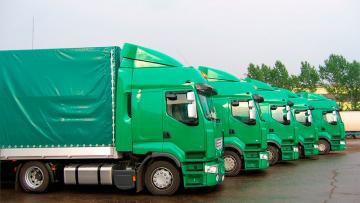 В Шушарах бесплатно проверят вес грузовых автомобилей