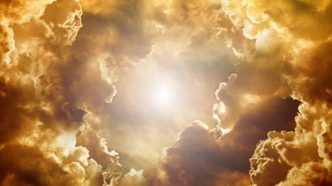 Активное солнце в начале лета поможет петербуржцам приостановить коронавирус