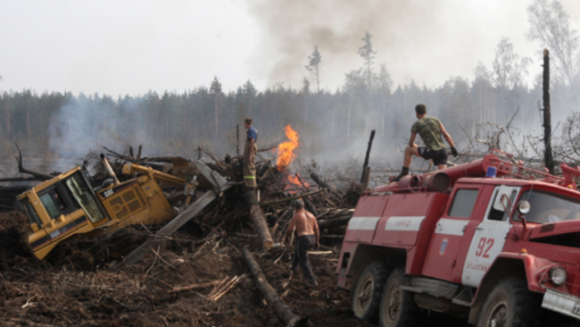 Отчет Минприроды: россияне стали активнее мусорить и тратить воду