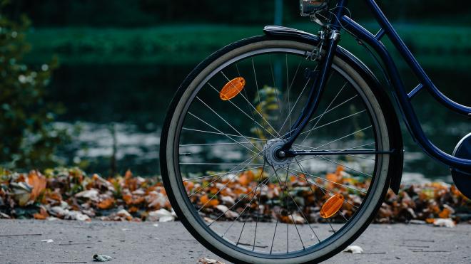 В 2019 году в Петербурге появится еще 44 километра велодорожек