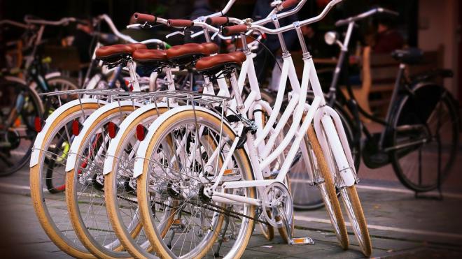 В Петербурге появляются яркие велодорожки