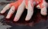 Кровавая драка в Петергофе: одного мужчину зарезали, второй в больнице