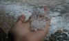 Фото: в Курортном районе прошел летний снег