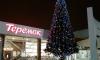 Праздник к нам приходит: в Петербурге установили первую новогоднюю елку