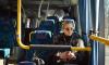 Из Петербурга в Таллин и Хельсинки будет ходить больше автобусов
