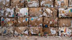 Петербург потратит 25 млн рублей для работы единого мусорного оператора