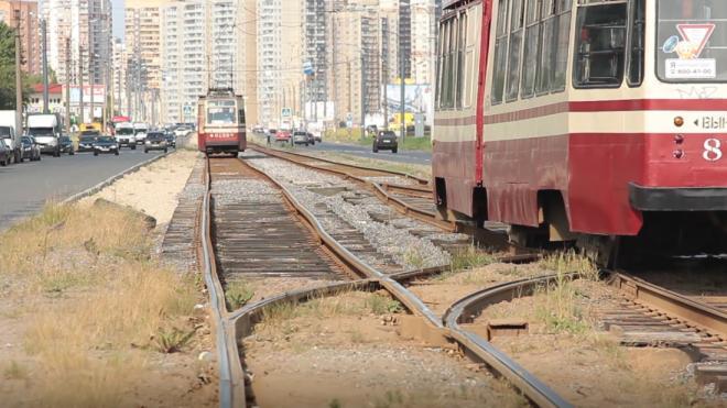 На севере Петербурга шесть трамваев изменят маршруты в мае