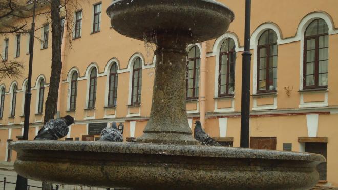 В 2021 году в Петербурге будут восстановлены еще 7 городских фонтанов