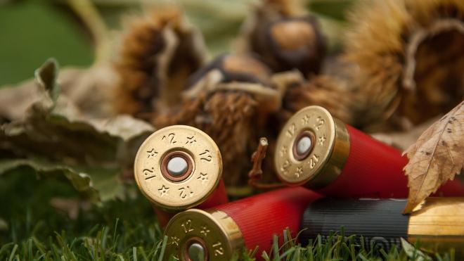 Стрелявшие из автомата Калашникова в новогодние праздники получили условный срок