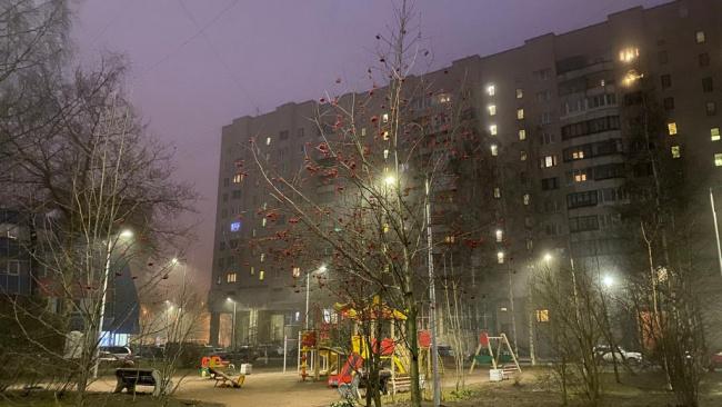 Реконструкция наружного освещения пройдет в двух микрорайонах Петергофа