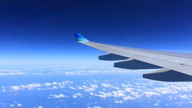 Самолет с пассажирами вернулся в аэропорт из-за столкновения с птицей