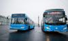 В Петербурге появится сотня новых автобусов