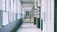 Гимназию №406 в Пушкине откроют к сентябрю