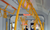 В Петербурге троллейбус №40 изменит маршрут на несколько дней