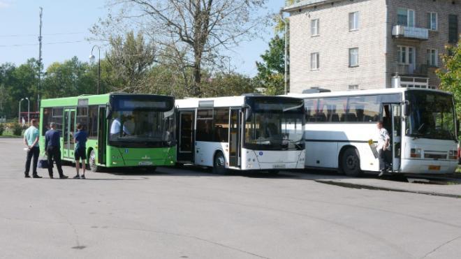В Волхове изменится расписание автобусов из-за голосования по поправкам в Конституцию