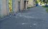 Фото: на Большом Смоленском обвалилась штукатурка