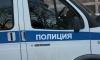 Купчинский бандит с пистолетом по быстрому срубил денег в микрозаймовой конторе